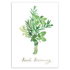 Kitchen art print, Herbs, Rosemary, Basil watercolor illustration, Food poster, 5X7 Green culinary artwork, Home decor, Condiments