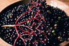 Kuchařka ze Svatojánu: BEZINKY Korn, Fruit, Syrup