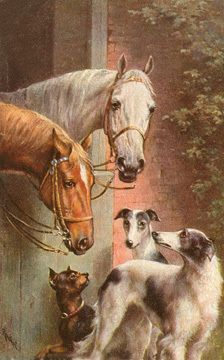 I  like how the horses seem to be relating to the dogs as if they are having a  conversation