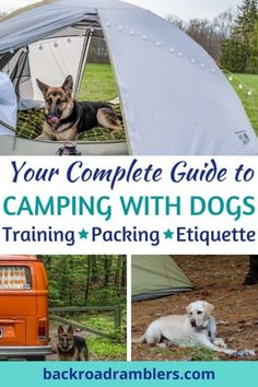 Ready to head out on a dog friendly camping trip. This post covers everything you need to know about camping with dogs, including what gear to pack, building your dog first aid kit, training tips for camping with dogs, and some basic campground etiquette. #camping #campingwithdogs #backroadramblers Kayak Camping, Camping And Hiking, Camping Tips, Backpacking Meals, Camping Hammock, Truck Camping, Ultralight Backpacking, Winter Camping, Camping Essentials