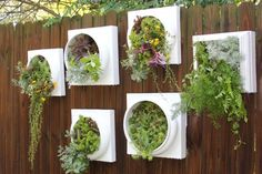 Living wall planters, using column bases