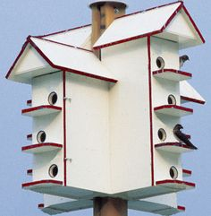 The Amish classic made available to you. Those who are not familiar with the Amish community are not aware of the huge advances that they have made available in the housing of purple martins. The T...