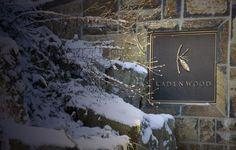 . Summer Winter, Gondola, Whistler, Estate Homes, Nice View, Skiing, The Neighbourhood, Real Estate, Gallery