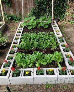 Démarrer un jardin Back to Eden à partir de zéro - potager - # . - Commencer un jardin Back to Eden à partir de zéro – potager – - Backyard Vegetable Gardens, Vegetable Garden Design, Outdoor Gardens, Vegetable Bed, Veg Garden, Vegetables Garden, Small Backyard Gardens, Raised Vegetable Garden Beds, Balcony Herb Gardens