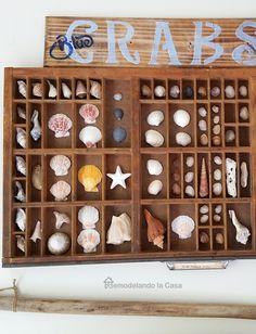 Use my small printer tray for sea shells!  from:  Remodelando la Casa: Summer Home Tour