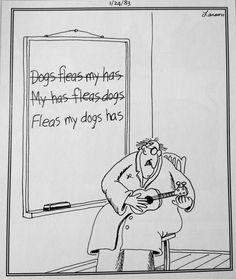my+dog+has+fleas+ukulele+shirt   Gary Larson flees my dog has