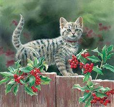 Kitten & Holly