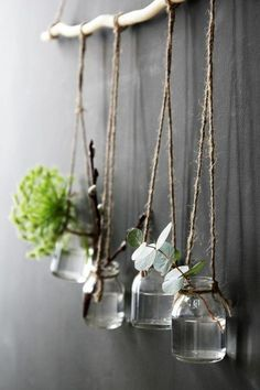 decoration bocal en verre, pots suspendus, plantes vertes
