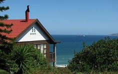 Whale-Phin Guest House enjoy unspoilt view of the the local fynbos and Indian Ocean Nature Reserve, The Locals, South Africa, Whale, Ocean, Cabin, House Styles, Places, Indian
