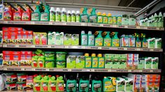 #1/3 of food products contain residue of controversial pesticide, CFIA finds - CBC.ca: CBC.ca 1/3 of food products contain residue of…