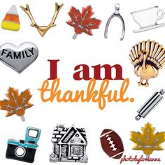 What are you thankful for? Have you seen the new holiday charms? givingahoot.orgamiowl.com