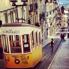«Bom dia Lisboa»