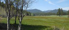 Trail Creek Meadows Ranch, Boise County Idaho, Star Ranch