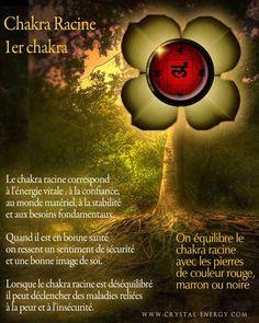 Ayurveda, Reiki Quotes, Spirit Yoga, Les Chakras, Reiki Chakra, Naturopathy, Qigong, Tai Chi, Yoga Meditation