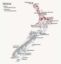 This map shows where Māori pā were found throughout New Zealand. They were located in the best areas to grow Polynesian crops such as kūmara and taro. Fortified pā were built to protect the inhabitants in times of war. Maori Words, Polynesian People, Maori Art, Interesting History, Forts, Languages, New Zealand, Maps, Buildings