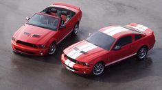 #Mustang