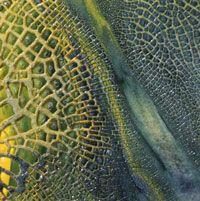 Assemblog of Michael deMeng: A Holiday Lizard Texture Recipe...Yum! with Kroma Crackle medium