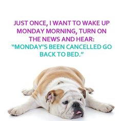 Mondays Cancelled quotes quote days of the week monday quotes happy monday monday humor monday morning