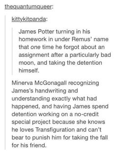 funny marauders tumblr - Google Search James potter Remus Lupin and Minerva McGonagall