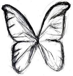 butterfly sketches butterfly drawing butterfly tattoo butterfly wings ...