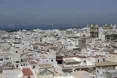 Salida de los grandes Veleros de la Gran Regata 2012 de Cádiz -