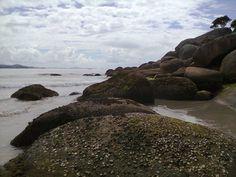 Pedras e mariscos