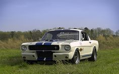 '65 Shelby GT350 R