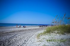 Things to do and how to save money in Hilton Head, SC