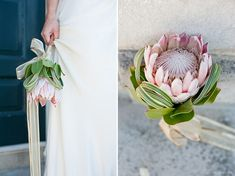 luxe inspiration in teal & gold A single large, exotic flower for a bridal bouquet-- a simple way to save cash and make a statement.A single large, exotic flower for a bridal bouquet-- a simple way to save cash and make a statement. Bouquet Bride, Protea Bouquet, Protea Flower, Bridesmaid Bouquet, Bridesmaids, Protea Wedding, Floral Wedding, Wedding Bouquets, Ranunculus Wedding