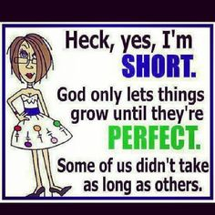 Vertically challenged.  Love this cause I am!