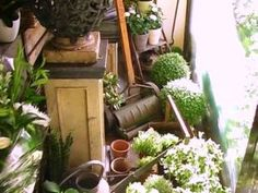 Colours of green - myLusciousLife.com - flower-shop.jpg