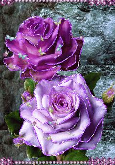 Very Beautiful Flowers, Beautiful Love Pictures, Beautiful Flowers Wallpapers, Beautiful Gif, Amazing Flowers, Rose Flower Wallpaper, Flowers Gif, Glitter Flowers, Love Rose Flower