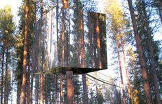 tree house getaway