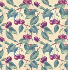Check out Seamless pattern with cherry by Astromonkey on Creative Market