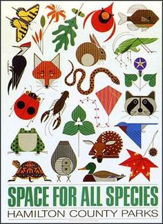 Charley Harper, a Cincinnati artist (alas, passed away in 2007), known for his wildlife and ecological art -- this is typical and a favorite of mine