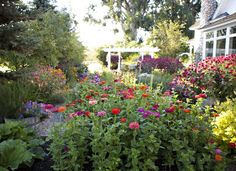 Be sure to check out this blog!  Hands down, the most beautiful flower beds I have ever seen.  Her favorite is zinnias, which I LOVE!  She also uses a lot of raised beds.