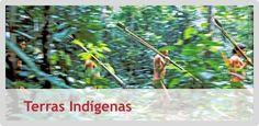 Site que apresenta dados e informações sobre as Terras Indígenas no Brasil