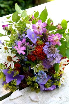 A gathering of garden flowers