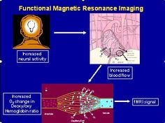 A Quick Primer on Functional Magnetic Resonance Imaging