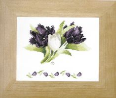 An attractive flower picture contrasting white and black tulips with light and dark foliage.  I've stitched this one!