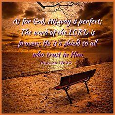 Psalm 18:30