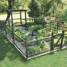 I want!  #garden