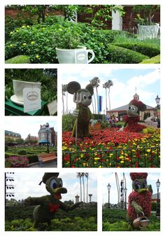 mickey minnie donald daisy, plus the British gardens at the Flower & Garden show