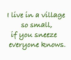 difference between city and village life