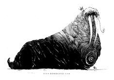 Walrus by =BenBASSO on deviantART