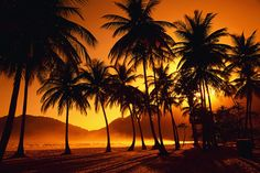 Trinidad and Tobago Sunset        Wednesday Open Thread    December 7, 2011  By Alexander 2 0 Comments and 0 Reactions