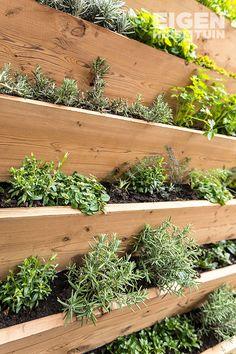 Herb Garden, Home And Garden, Home Interior Design, Interior Decorating, Little White House, Herbs Indoors, House Goals, Dream Garden, Garden Inspiration