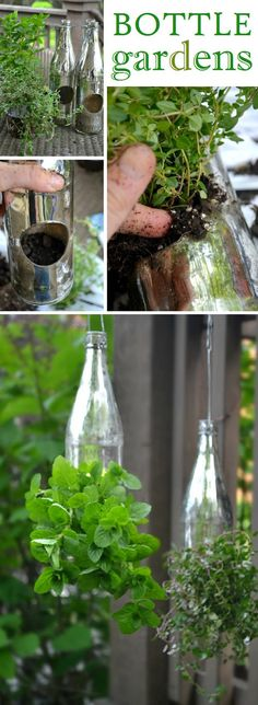 Creative Outdoor Herb Gardens • Ideas and Tutorials!