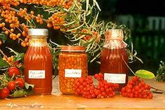Top ten food trends for 2012 Food Technology, Hello October, Kitchen Themes, Warm Autumn, Food Trends, Months In A Year, 12 Months, Hot Sauce Bottles, Preserves