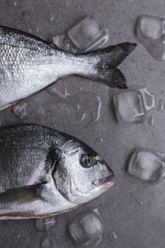 Quiche with White Fish and Asparagus by Tanya Balyanitsa. More seasonal recipes on Honeytanie.com. Enjoy!